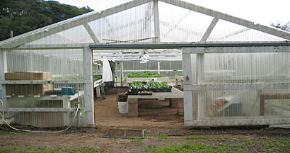 The greenhouse and shade house are busy from December until June
